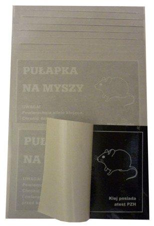 Lep na Myszy pojedyńczy Czarny  KOMPLET /zestaw - 10szt./
